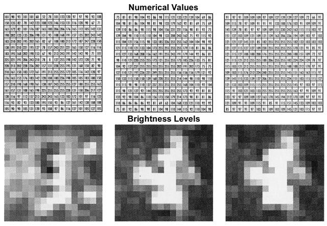 D - Lexikon der Fernerkundung: DAAC bis Dynamik in Bilddaten